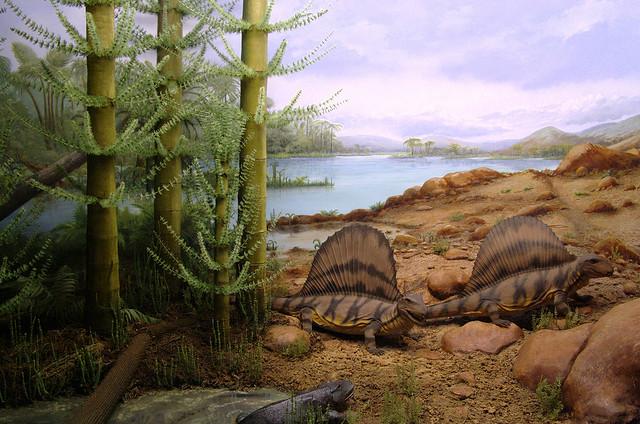 Lycopod Forest