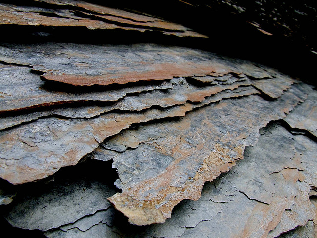 Red Shale Stone : Clastic sedimentary rocks